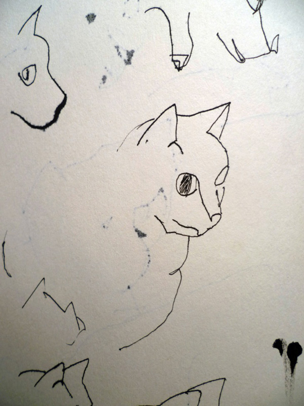 sketches-cat